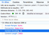 Miniature de Precompress a static website with Brotli and Gzip